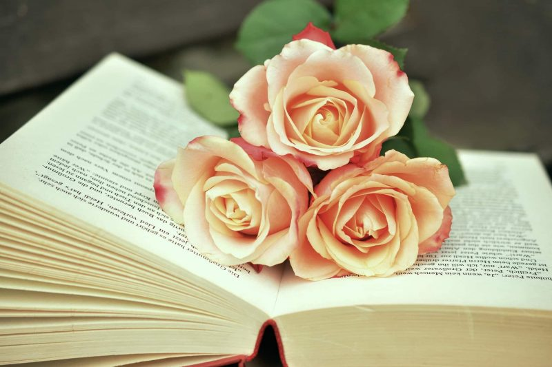 open book with roses